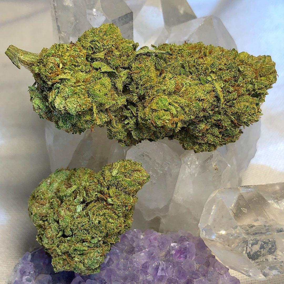 blue cheese by texas hemp culture cbd hemp flower review by consciouscloudscbd
