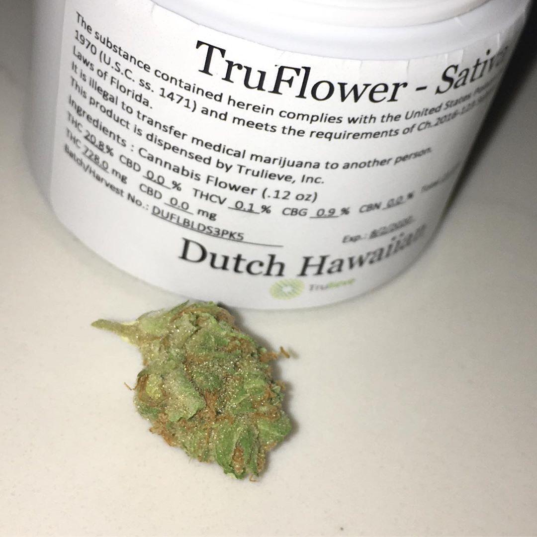 dutch hawaiian truflower from truleive satia strain review by indicadam