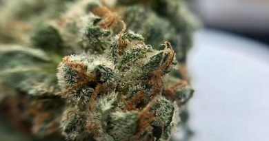 super a5 from liberty health sciences strain review by shanchyrls 2