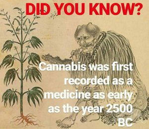 cannabis was first recorded as a medicine as early as 2500 bc