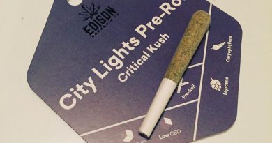 city lights aka critical kush pre-roll from edison cannabis co. review by thecoughingwalrus