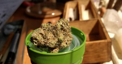 kush mints strain review by pdxstoneman