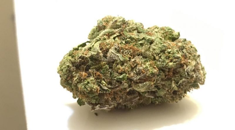 pink grease (bubba kush x pink kush) strain review by thecoughingwalrus