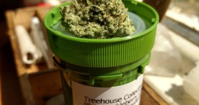 platinum huckleberry cookies from treehouse collective strain review by pdxstoneman