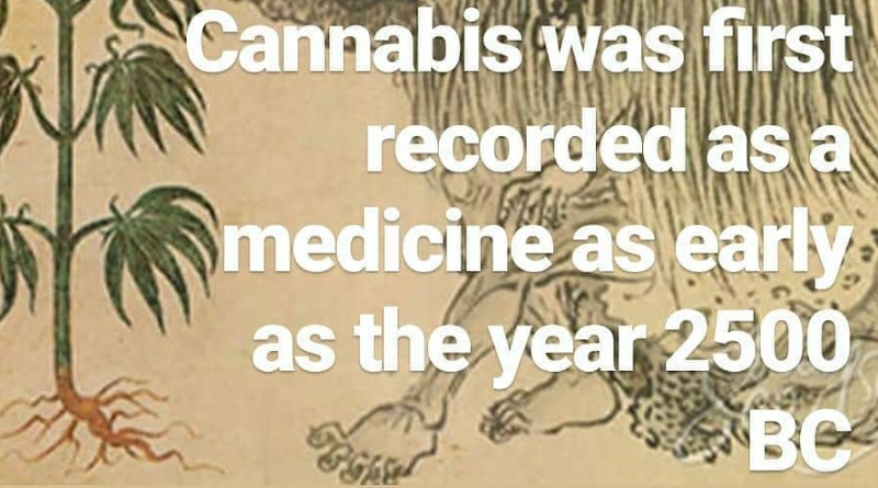 shen nung first documented cannabis as medicine as early as 2500 bc