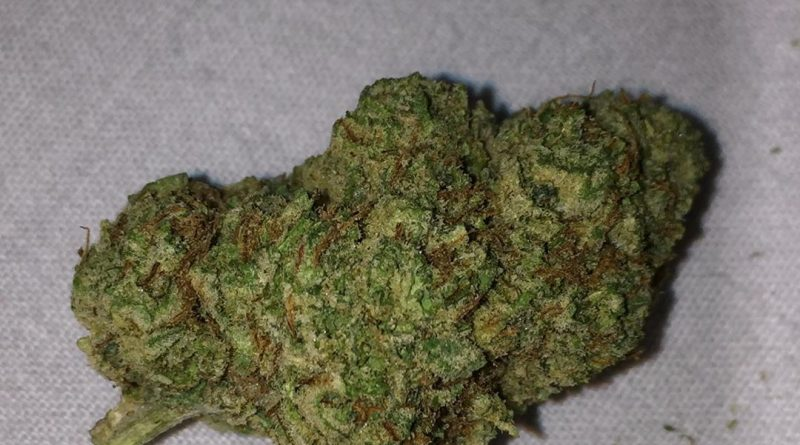 strawberry banana by dna genetics strain review by jean_roulin_420