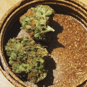 tangerine dream strain review by jean_roulin_420 2