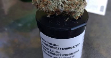 white russian by high noon cultivation strain review by pdxstoneman