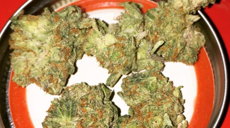 zombie kush by ripper seeds strain review by jean_roulin_420