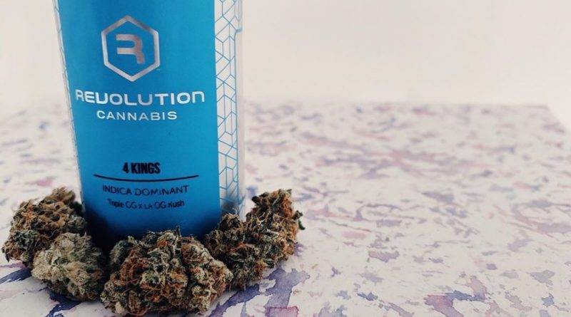 4 kings by revolution cannabis strain review by upinsmokesession