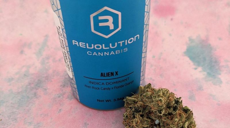 alien x by revolution cannabis strain review by upinsmokesession