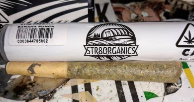 banana punch preroll by str8 organics strain review by sjweedreviewbanana punch preroll by str8 organics strain review by sjweedreview
