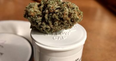 blackberry bubba by highland provisions strain review by pdxstoneman