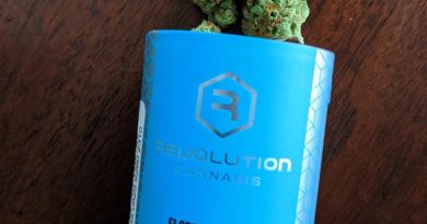 florida orange by revolution cannabis strain review by upinsmokesession