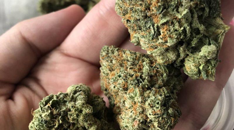 green crack aka cush by cecil c strain review by thatcutecannacouple