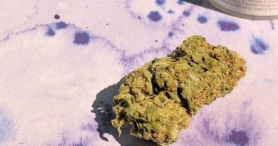 holy grail kush hgk by nature's grace and wellness strain review by upinsmokesession