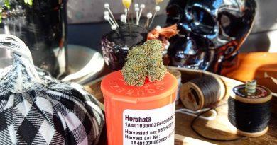 horchata by meraki gardens strain review by pdxstoneman