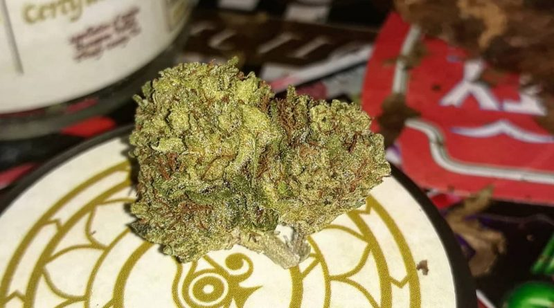 infinite euphoria by flower daze farm strain review by sjweedreview