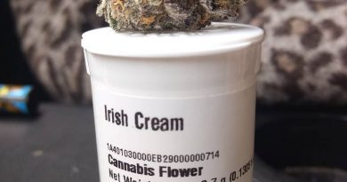 irish cream by high noon strain review by pdxstoneman