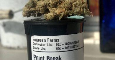 point break by eugreen farms strain review by pdxstoneman