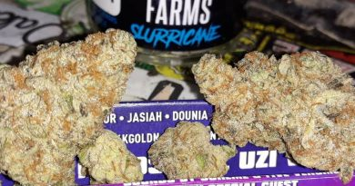 slurricane by party time farms strain review by sjweedreview