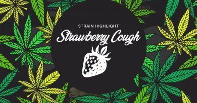 strawberry cough by pure ohio wellness strain review by ohio_marijuana