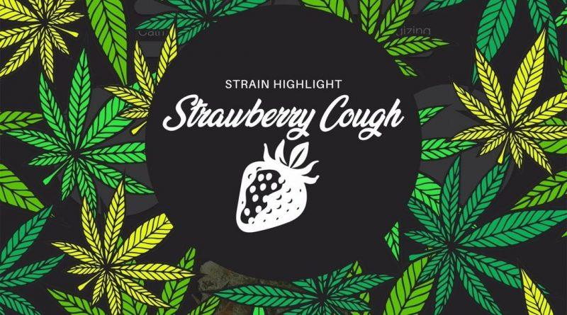strawberry cough by pure ohio wellness strain review by ohio_marijuana