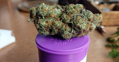 strawberry shortcake by high noon strain review by pdxstoneman