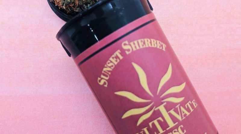 sunset sherbet by cultivate strain review by upinsmokesession