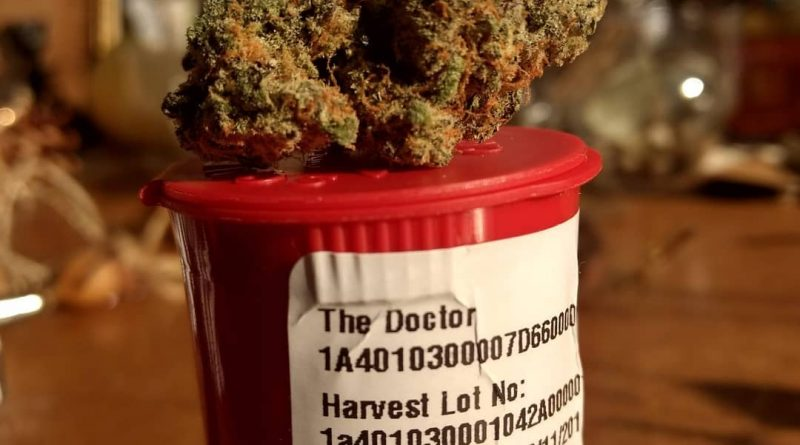 the doctor by geek farms strain review by pdxstoneman