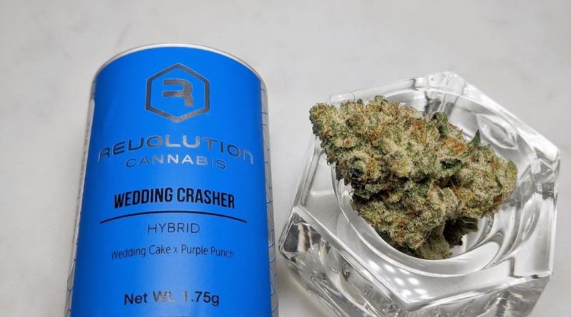 wedding crasher by revolution cananbis strain review by upinsmokesession