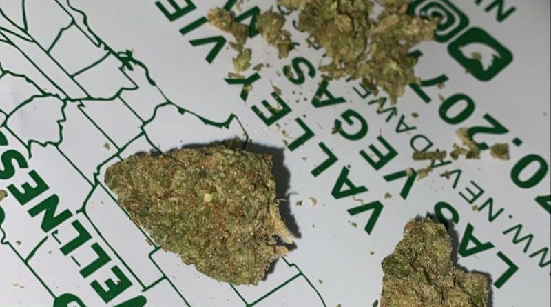 91 chem va skunk by solaris farms strain review by everythinghazee