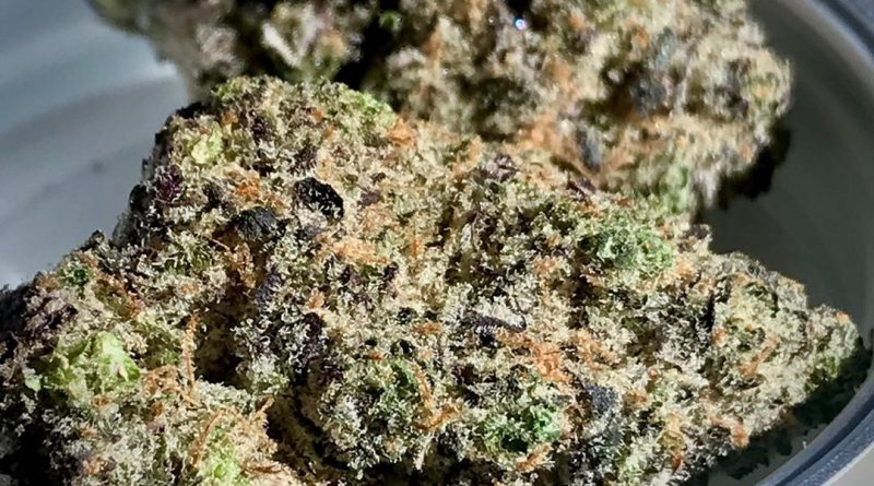 ain't one by bedford grows strain review by cannacase.420