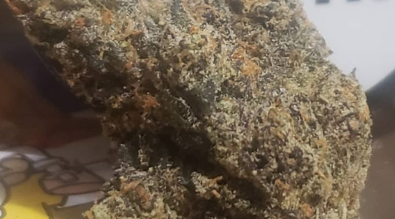 biscotti by connected cannabis co strain review by cannasaurus_rex_reviews