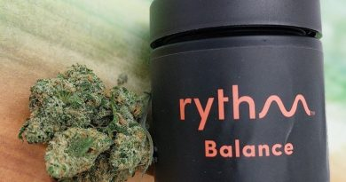 blue dream by rythm strain review by upinsmokesession