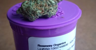 bruce banner from roseway organics strain review by pdxstoneman