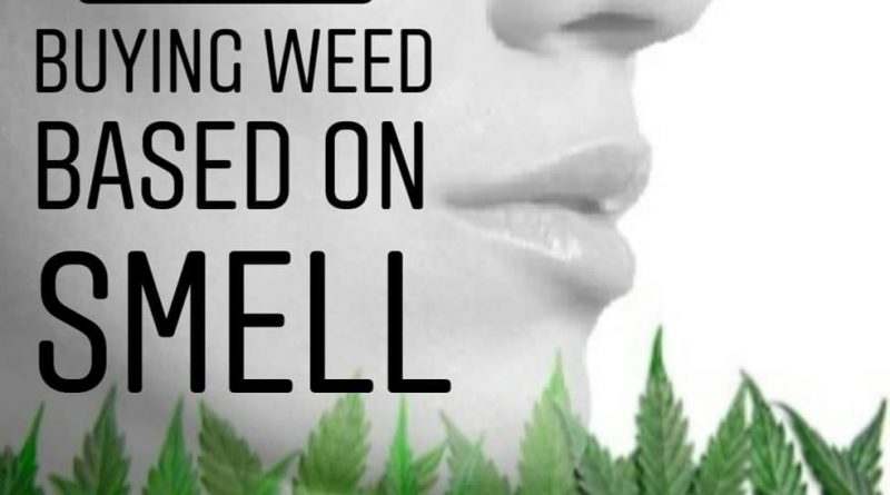 buy weed based on smell not thc percentage protip by cannaquestions