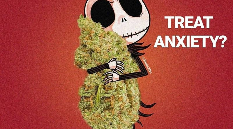 photo cred buds2be can cannabis treat anxiety cannabis faq by cannaquestions