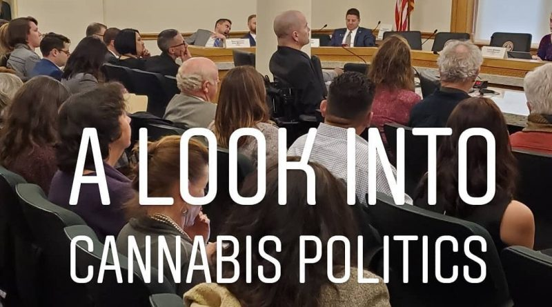 cannabis use employee rights blogpost cannaquestions