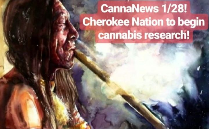 cherokee nation begins cannabis research blogpost by cannaquestions