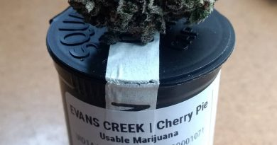 cherry pie by evans creek farms starin review by pdxstoneman