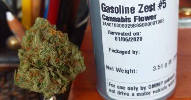 gasoline zest #5 by meraki gardens strain review by pdxstoneman