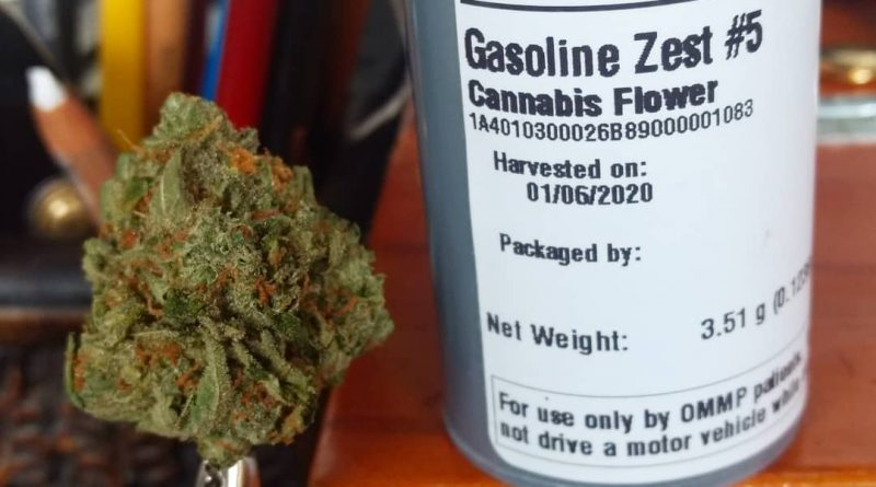 gasoline zest #5 by meraki gardens strain review by pdxstoneman
