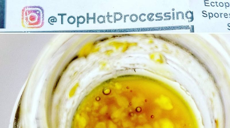 glue live jelly by top hat processing concentrate review by sticky_haze420