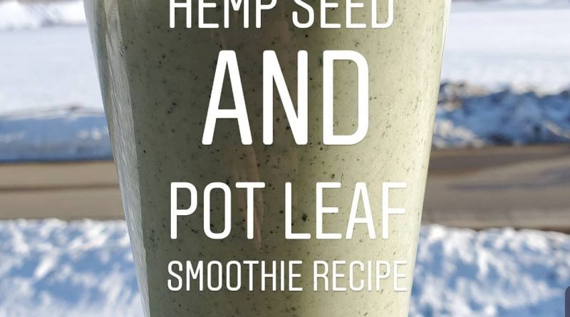 hemp seed and pot leaf smoothie recipe by cannaquestions