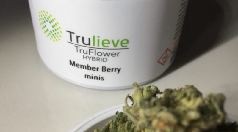 member berry minis by trulieve strain review by indicadam