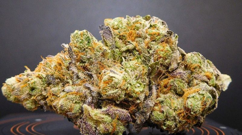 raindance from tetra dispensario strain review by tropicannapr_