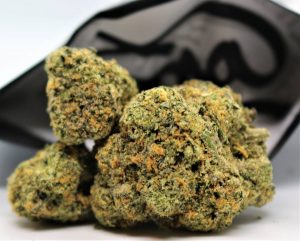 rs 11 by wizard trees farm strain review by cannasaurus_rex_reviews 2