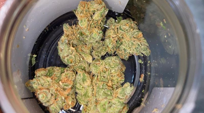 silver mountain #2 by desert grown farms strain review by everythinghazee