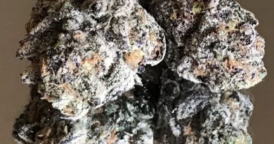 chem pie by rooted zen strain review by okcannacritic